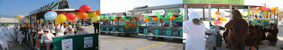 c-fakepath-tren-carnaval.medirflash.png